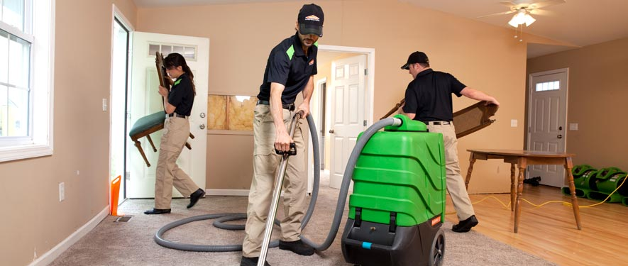 Romulus, MI cleaning services