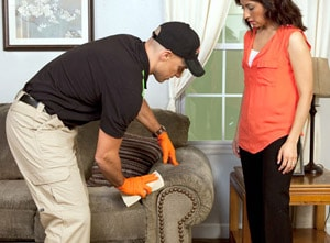 carpet cleaner upholstery cleaner